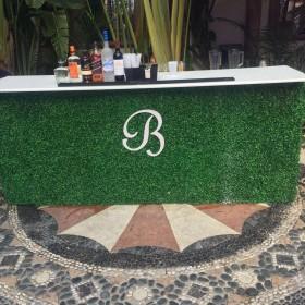 Topiary bar 2 website