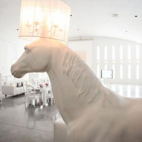 horse white detail