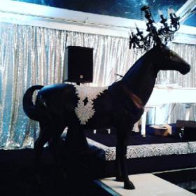 horse_black